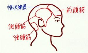 CCF20140826_00000